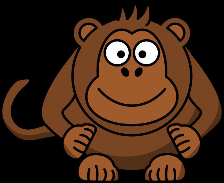 monkey-37394_1280