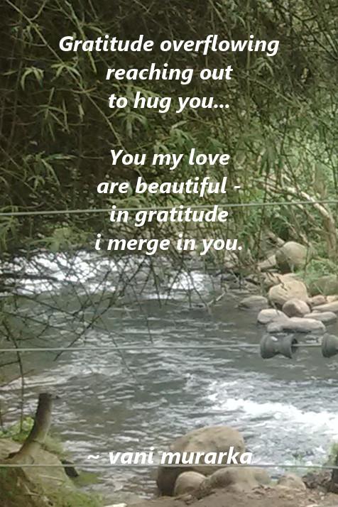 gratitude overflowing