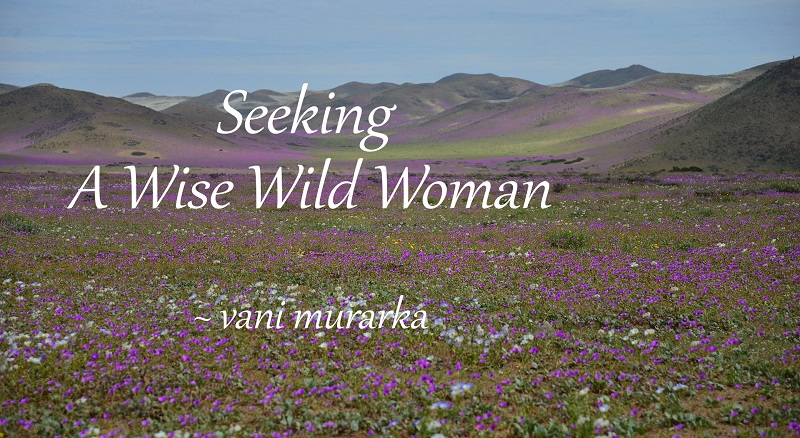 Fiction continued: Seeking A Wise Wild Woman
